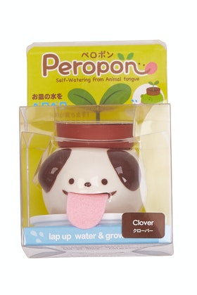 Outliving Peropon Dog Clover Planter