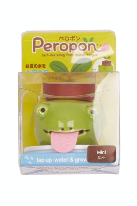 Outliving Peropon Frog Mint Planter