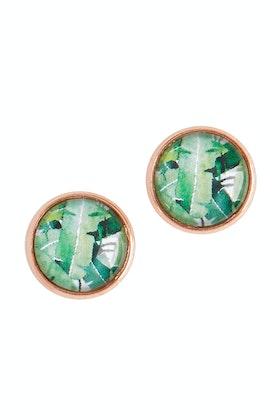 Nest Of Pambula Daintree Stud Earrings