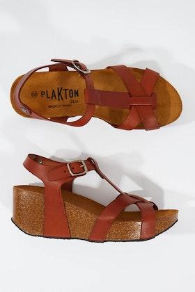 Plakton Planta Sandal