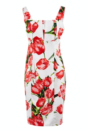 Spicy Sugar Cindy Floral Dress