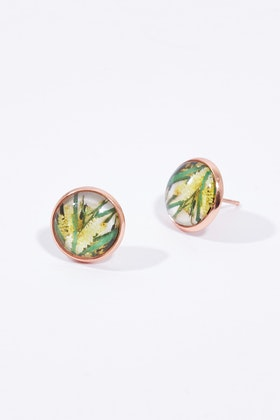 Nest Of Pambula Wattle Stud Earrings