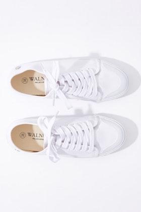 Walnut Empire Canvas Sneaker