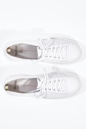 Mollini Orphic Leather Sneaker