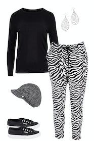Zebra Zing