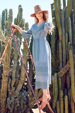 Picnic In the Fields Dress